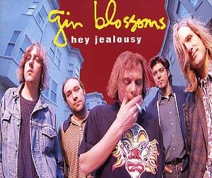 Gin_Blossoms_-_Hey_Jealousy