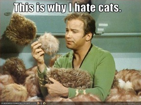 why-i-hate-cats