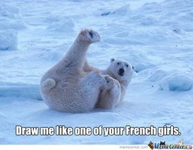 polar-bear-posing_c_157564