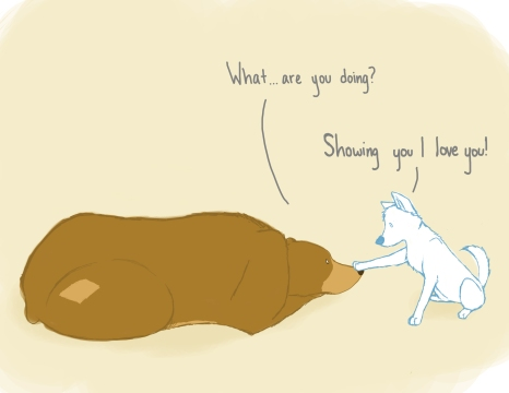 "[image: one panel comic of a brown bear and a white dog. The dog has a paw placed on the bear. ""What...are you doing?"" the bear asks. The dog responds, ""Showing you I love you!""]"
